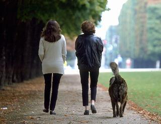 アニマルコミュニケーションをしている人と犬